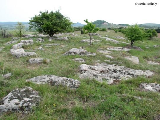 Káli-medence, Kővágóörs