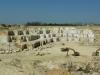 Süttő, Haraszti mészkőbánya